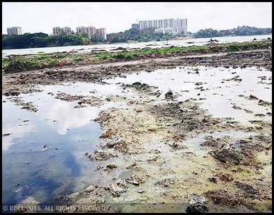 bengalurus-jakkur-lake-turns-wasteland-redesign-begins