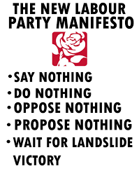 party manefesto Caroline lucas said that the labour party did not go far enough and she felt let down by the party's position on brexit.